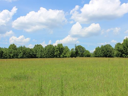 Rolling Pasture : Warrenton : Warren County : Georgia