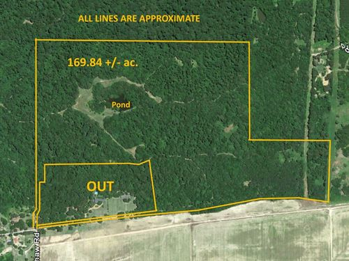 170 Acres Of Prime Hunting Land : Crenshaw : Panola County : Mississippi