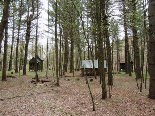 16 Acres Riverfront Cabin : Diana : Lewis County : New York
