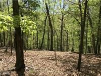 Captivating Views : Keyser : Mineral County : West Virginia