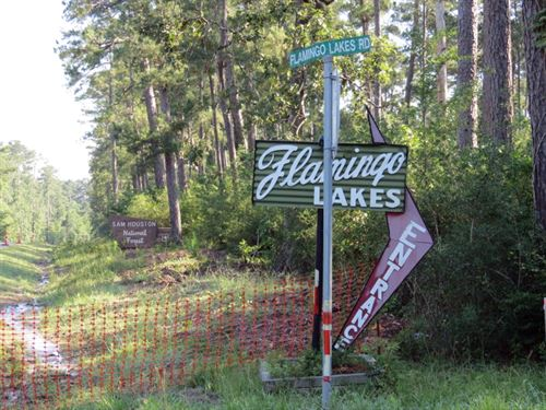 Flamingo Lakes : Montgomery : Texas