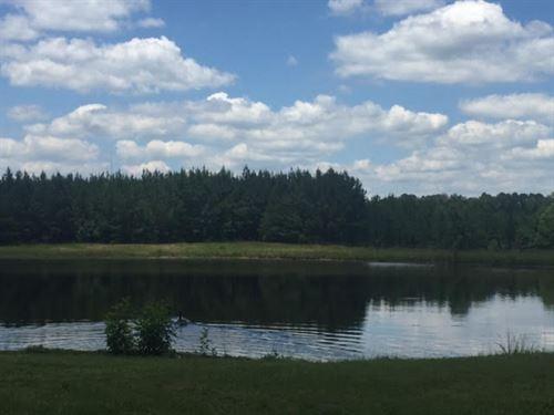 Residential Or Development Land For : Quitman : Clarke County : Mississippi