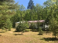 Awesome 30 Acres & Great Home : Baldwin : Lake County : Michigan