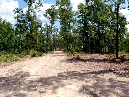 5 Acre Home Site In Country Setting : West Plains : Howell County : Missouri