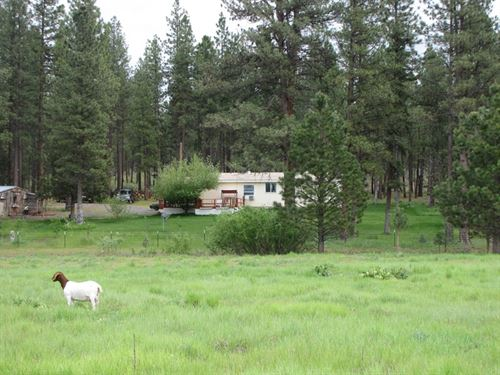 29 Acre Family Farm : Chiloquin : Klamath County : Oregon