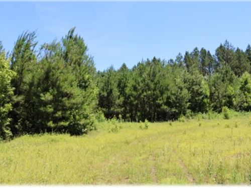 153 Acres In Montgomery County : Vaiden : Montgomery County : Mississippi