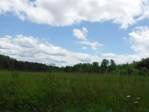 46.76 Acres On Pages Lane : Smithville : Dekalb County : Tennessee