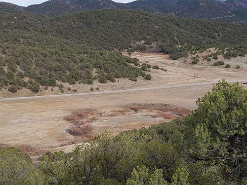 Mountain Views + Grazing Land : Canon City : Fremont County : Colorado