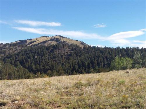 Acreage In Gated Community : Canon City : Fremont County : Colorado