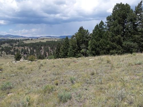 Premium Parcel Of Mountain Land : Canon City : Fremont County : Colorado
