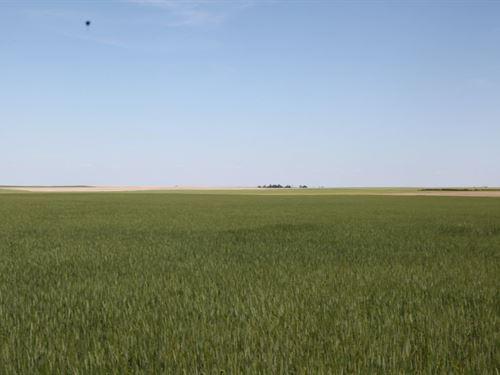 Cheyenne County Dryland : Dalton : Cheyenne County : Nebraska