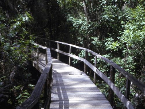 .44 Acres For Sale In Sebring, FL : Sebring : Highlands County : Florida