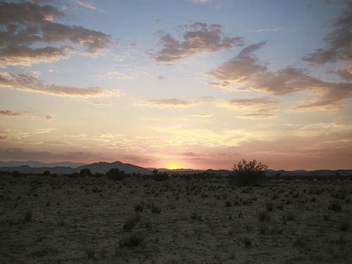Desert Sunsets Await : Joshua Tree : San Bernardino County : California