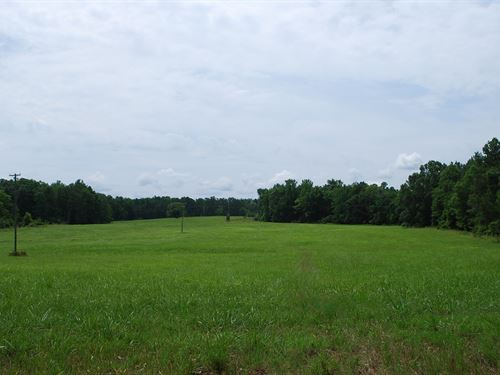 110 Acres With Pond & Pasture : Union : South Carolina