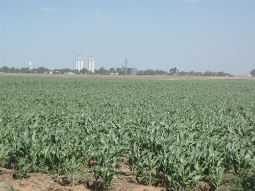 7/10 -80 Acres Of Grain And Cattle : Jet : Alfalfa County : Oklahoma