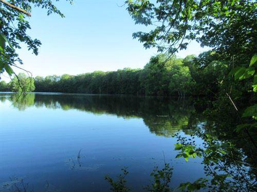 Waterfront Land On Sisley Pond Ny : Williamstown : Oswego County : New York
