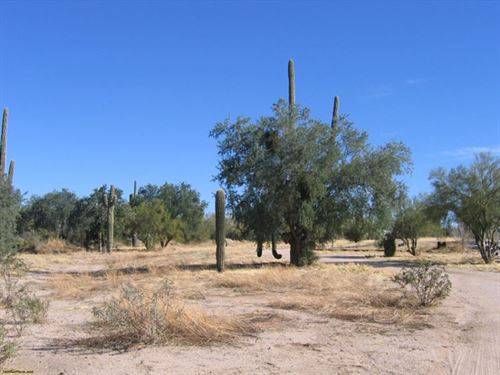 Don't Wait On This Price : Eloy : Pinal County : Arizona