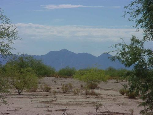Escape The City To Peace And Quiet : Eloy : Pinal County : Arizona