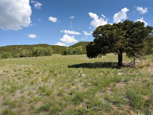 6367356 - Sunshine Acres : Poncha Springs : Chaffee County : Colorado