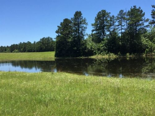 42.7 Acres Wooded & Pasture Lan : Tylertown : Walthall County : Mississippi