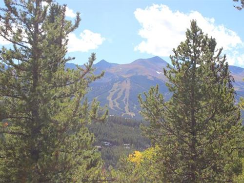 Private Homesite Among Healthy P : Summit County : Summit County : Colorado