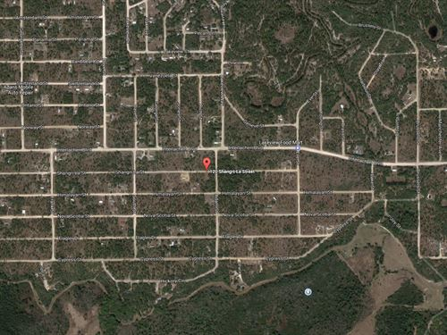 .23 Acres In Interlachen, FL : Interlachen : Putnam County : Florida