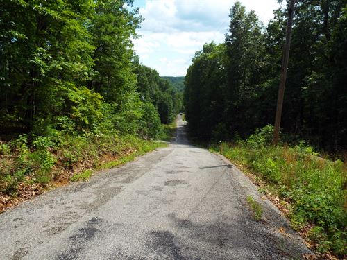 5 Wooded Acres In Cumberland Co Tn : Rockwood : Cumberland County : Tennessee