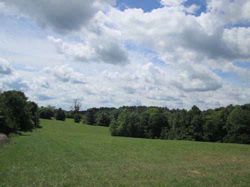 51.58 Acres In Metcalfe County, Ky : Edmonton : Metcalfe County : Kentucky