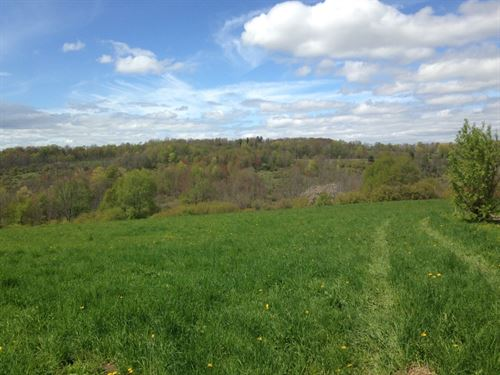 57 Acres Farmland, Woods & Stream : Norwich : Chenango County : New York