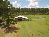 Beautiful Pasture Land : Sandersville : Washington County : Georgia
