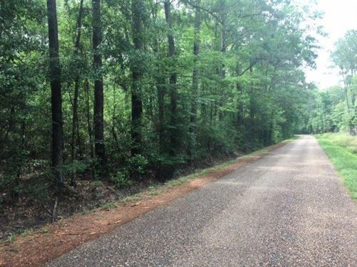 Ellis Road 8 Acres : Varnado : Washington Parish : Louisiana