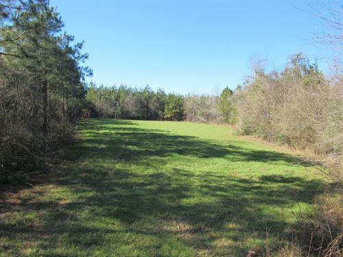 Sophia Sutton Road 125713 : Prentiss : Jefferson Davis County : Mississippi