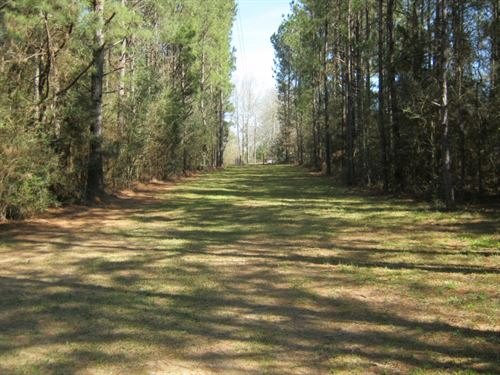 115 Ryan Rd, Tylertown, MS : Tylertown : Walthall County : Mississippi