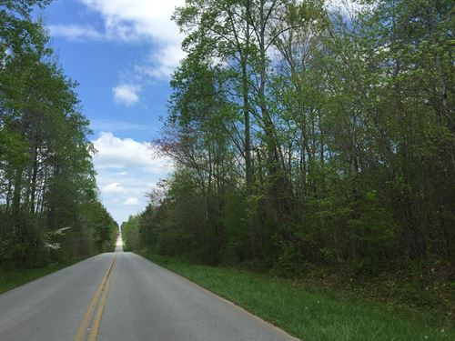 Tract 1B, 25 +/- Wooded Acres : Buchanan : Haralson County : Georgia