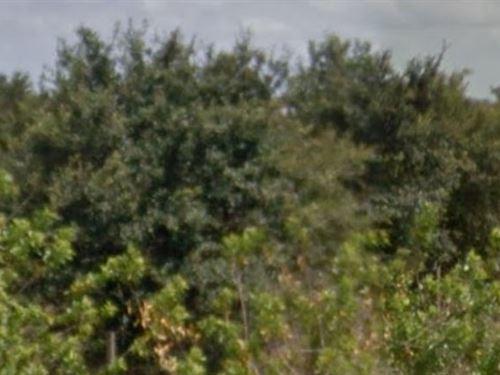 Polk County, Fl $9,000 Neg : Frostproof : Polk County : Florida