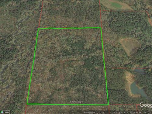 Hunting Or Timber Investment : Laurel : Jones County : Mississippi