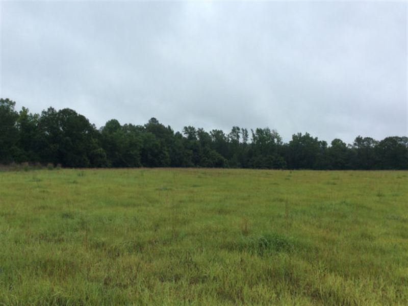 Mixed Use Land : Rentz : Laurens County : Georgia