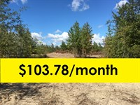 Owner Financed With Home Site : Dublin : Laurens County : Georgia