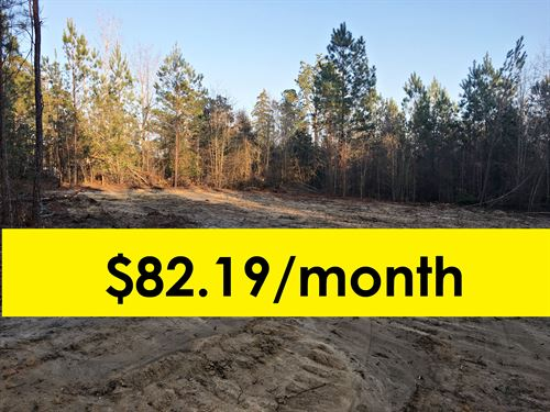 Owner financed land in bulloch county ga