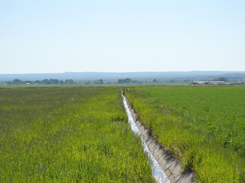 Riverton Hay Farm : Riverton : Fremont County : Wyoming