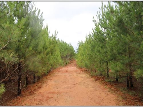 44 Acres In Leake County : Carthage : Leake County : Mississippi