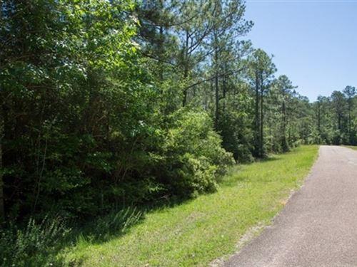 Texas, Jasper County : Brookeland : Jasper County : Texas