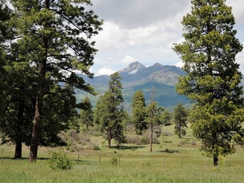 Reserve At Pagosa Peak, Lot 105 : Pagosa Springs : Archuleta County : Colorado