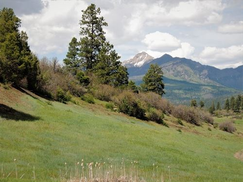Reserve At Pagosa Peak, Lot 137 : Pagosa Springs : Archuleta County : Colorado