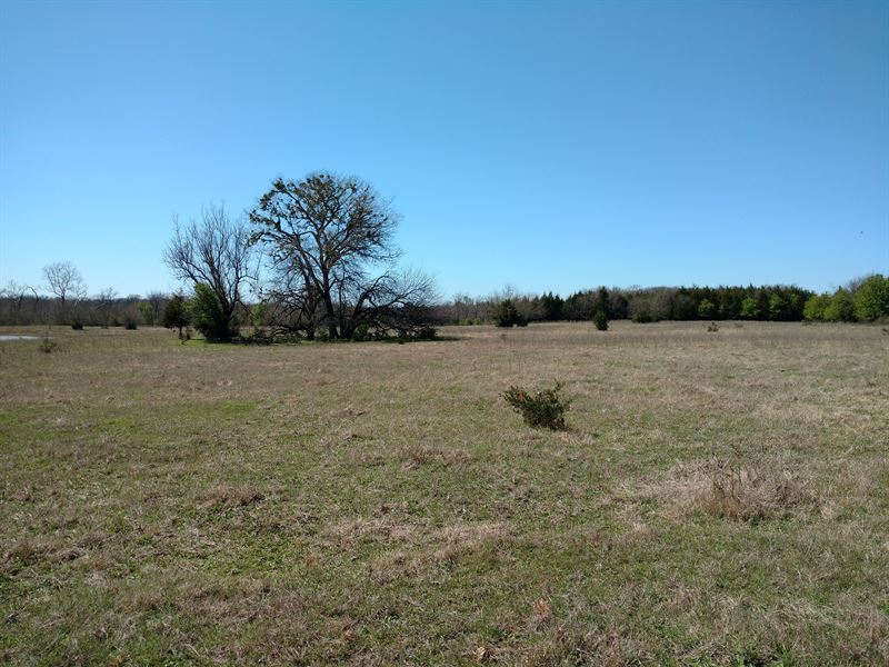 Commercial Property : Durant : Bryan County : Oklahoma
