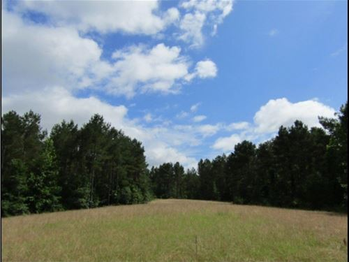 60 Acres In Montgomery County : Poplar Springs : Montgomery County : Mississippi