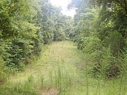 69.46 Acres In Yazoo County : Bentonia : Yazoo County : Mississippi