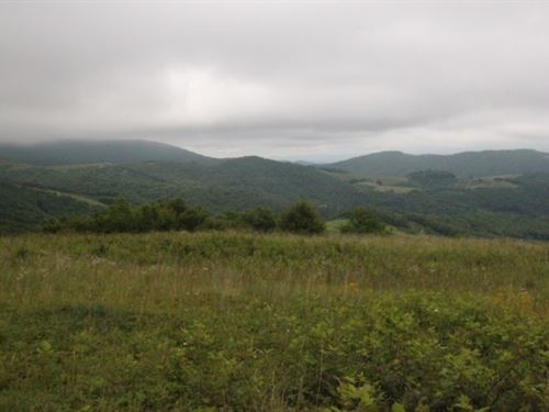Big, High Elevation Views : Whitetop : Grayson County : Virginia