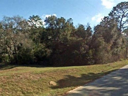 Marion County, Fl $26,000 Neg : Dunnellon : Marion County : Florida