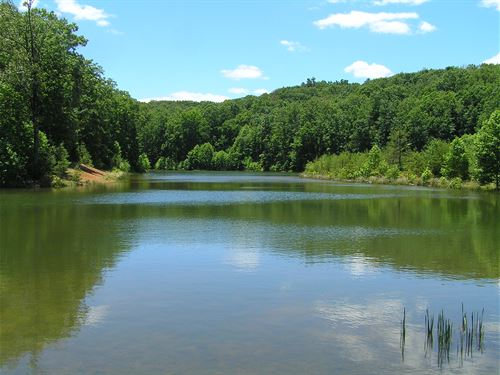 You Own The Lake And Lot : Dunlap : Sequatchie County : Tennessee
